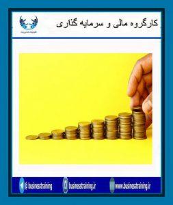 ۱. تمرکز بر سود ناخالص و نادیده گرفتن درآمد و سود خالص